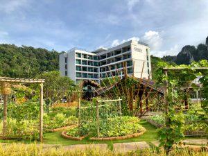 Ab August auch außen grün: Das ANANA Ecological Resort